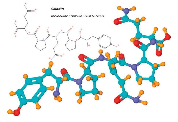 Gliadin, a component of gluten