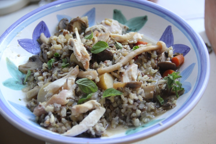 Chicken, Vermouth, and Wild Rice Stew
